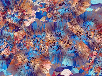 Fibrous Crystals Photograph - Ocean Jasper by Bernardo Cesare