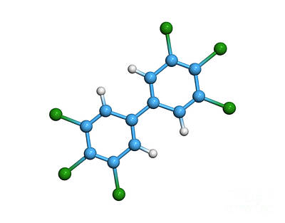 Polychlorinated Biphenyl Molecule Art Print by Dr. Tim Evans