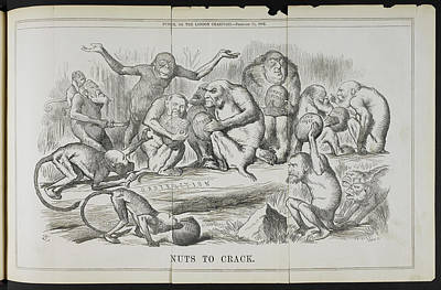 Punch Art Print by British Library