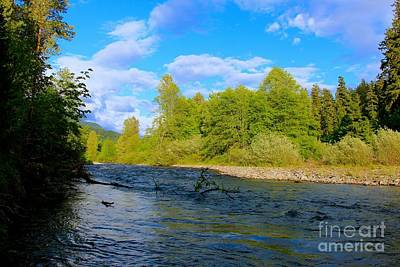 Photograph - Salmon  Creek  by Tim Rice
