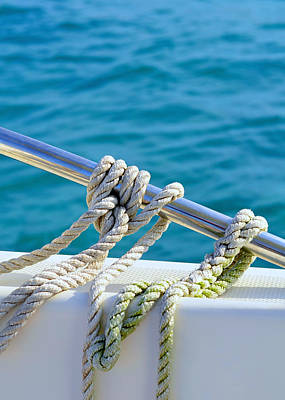 Tropical Series Photograph - The Ropes by Laura Fasulo