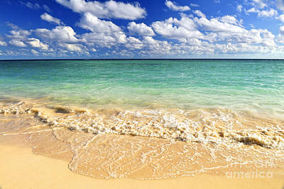 Beach Royalty-Free and Rights-Managed Images - Tropical beach by Elena Elisseeva