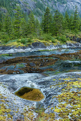 Usa, Alaska, Tongass National Forest Art Print by Jaynes Gallery