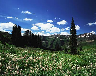 Adam Photograph - Usa, Colorado, Gunnison National by Adam Jones