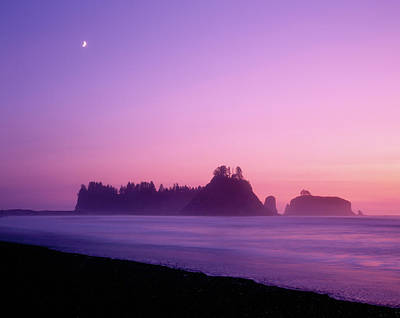 Olympic National Park Photograph - Usa, Washington State, Olympic National by Jaynes Gallery
