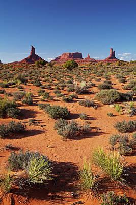Castle Rock Photograph - Utah Arizona Border, Navajo Nation by David Wall
