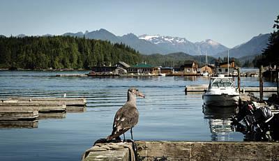 Floating House Photograph - Vancouver Island, Tofino by Matt Freedman