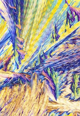 Vitamin Crystals Photograph - Vitamin B1 Crystals, Light Micrograph by David Parker
