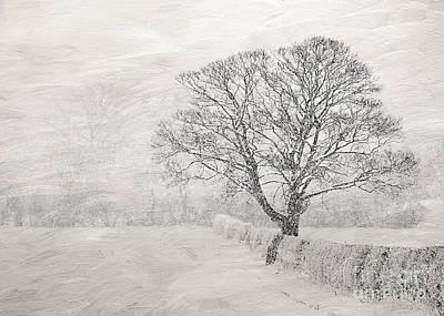 Winter Art Print by Svetlana Sewell