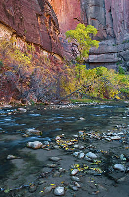 Riverwalk Photograph - Usa, Utah, Zion National Park by Jaynes Gallery