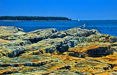 7310 - Bar Harbor Art Print