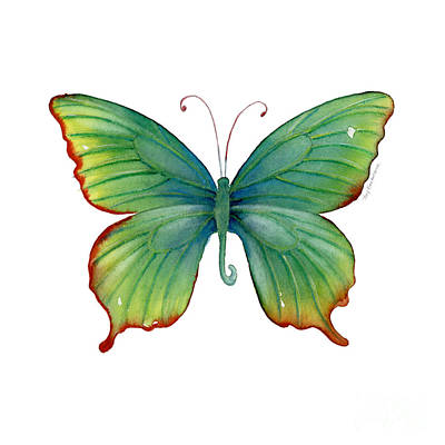 74 Green Flame Tip Butterfly Art Print by Amy Kirkpatrick