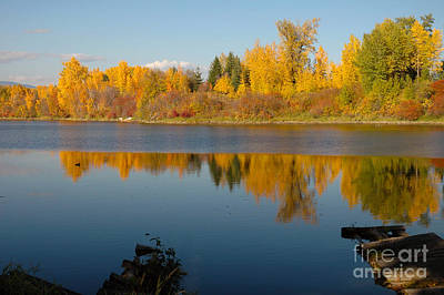 Photograph - 740p Sand Creek by NightVisions