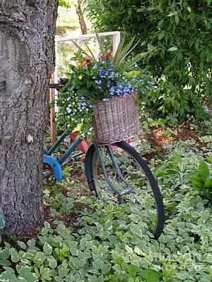 #755 D45 Bike And A Basket Of Flowers Art Print