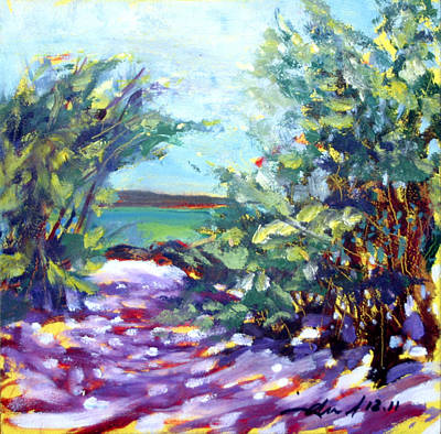 Fauvist Painting - Kiholo Shadows by Richard Rochkovsky