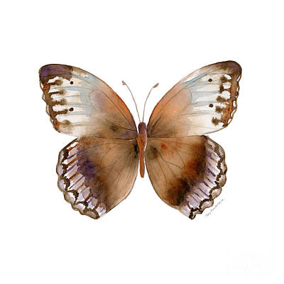 On-white Painting - 79 Jungle Queen Butterfly by Amy Kirkpatrick