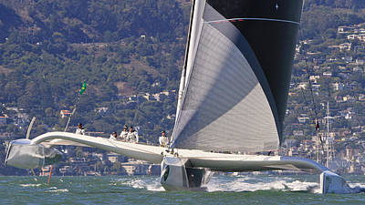 Sausalito Photograph - San Francisco Sailing by Steven Lapkin
