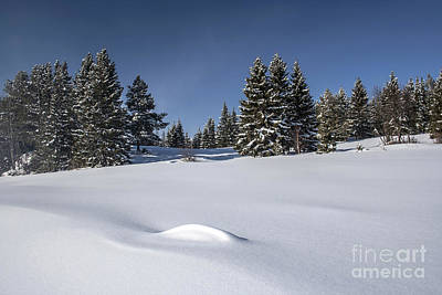 Beautiful Winter Landscape Art Print by IB Photo