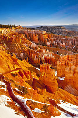 Photograph - Bryce Canyon  by Brian Jannsen