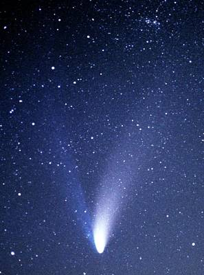 Comet Hale-bopp Art Print