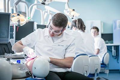 Practise Photograph - Dentistry Training by Gustoimages