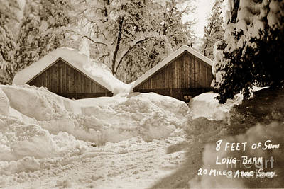 Photograph - 8 Feet Of Snow Long Barn Tuolumne County 1930 by California Views Archives Mr Pat Hathaway Archives