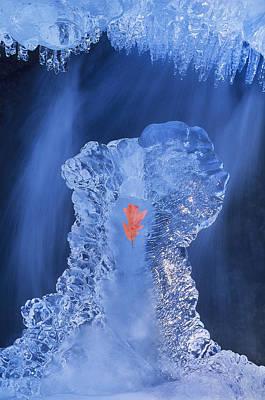 Frozen Beauty Aka Ice Is Nice IIi Art Print