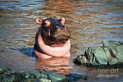 Face Photograph - Hippopotamus In River. Serengeti. Tanzania by Michal Bednarek