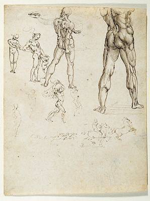 Naked Male Art Photograph - Italy, Piemonte, Turin, Royal Library by Everett