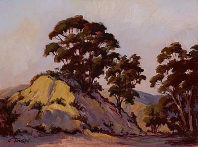 Ridge Eucalyptus Art Print by Jane Thorpe