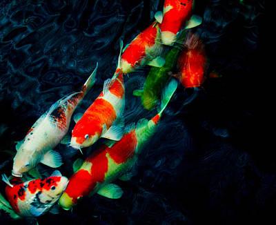 Photograph - 8 Kois by Chua  ChinLeng