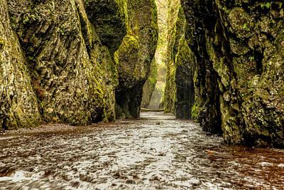 Portland Photograph - Oneonta Gorge Series by Josh Whalen