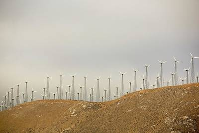 Part Of The Tehachapi Pass Wind Farm Art Print by Ashley Cooper