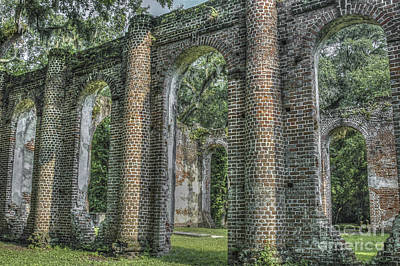 Photograph - Sheldon Church Yemassee Sc by Dale Powell