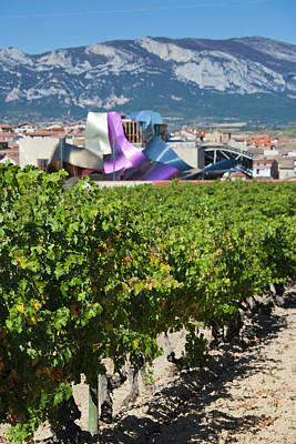 Winery Photograph - Spain, Basque Country Region, La Rioja by Walter Bibikow