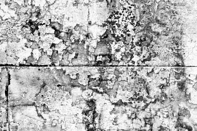 Stone Wall Print by Tom Gowanlock