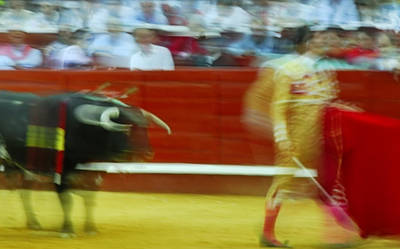 Corrida Photograph - Tauromaquia Bull-fights In Spain by Guido Montanes Castillo