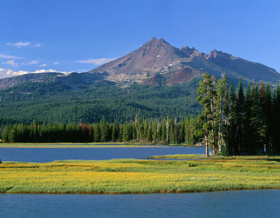 Usa, Oregon, Deschutes National Forest Art Print