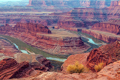 Goosenecks State Park Photograph - Usa, Utah, Dead Horse Point State Park by Jaynes Gallery