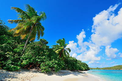 Photograph - Virgin Islands Beach by Songquan Deng