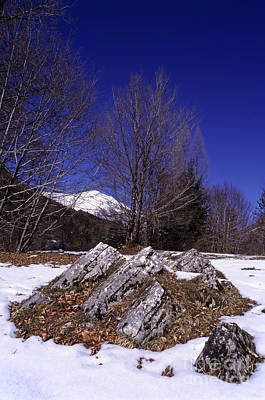 Photograph - Wintertime In Abruzzo National Park by George Atsametakis