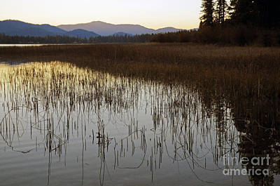 Photograph - 818p Thompson Lake by NightVisions