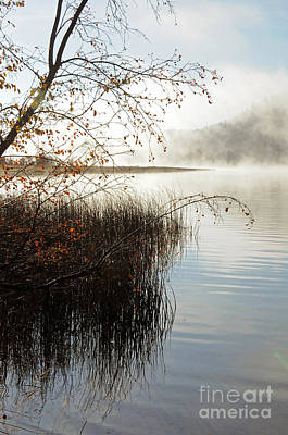 Photograph - 820p Thompson Lake by NightVisions