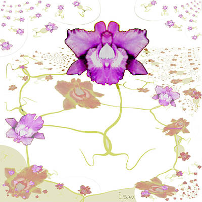 Digital Art - 846 - Purple Orchid by Irmgard Schoendorf Welch