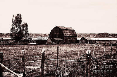 866 Se  A Bit Of Country  1 Art Print by Chris Berry