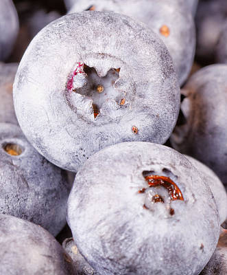 Photograph - Blueberries by Peter Lakomy