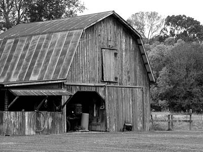 Photograph - Cajun Barn by Ronald Olivier