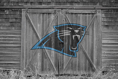 Photograph - Carolina Panthers by Joe Hamilton