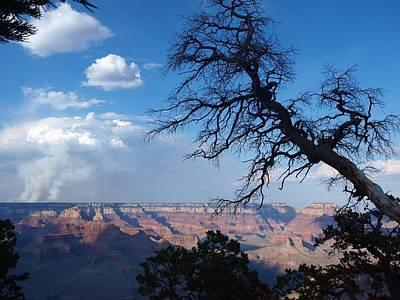 Photograph - Grand Canyon  by Jeffrey Akerson