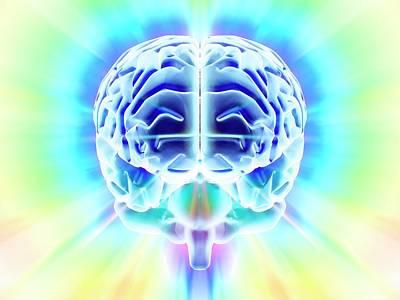 Human Brain Art Print by Pasieka